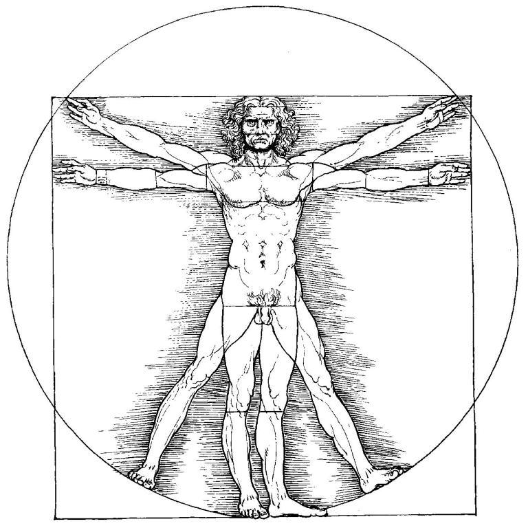Anatomía Intuitiva